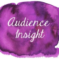 Audience Insight and Analysis